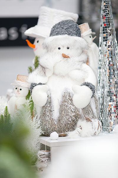 5e9f9ad571f Od 12. do 15. prosince se opět rozzáří letňanské výstaviště PVA EXPO PRAHA  světlem vánočních stromků