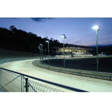Chrtí rekordmani Greyhound Park Motol 1