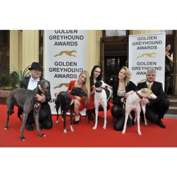 Czech Golden Greyhounds Racing Winners