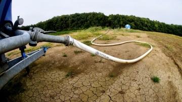 Prohlášení ČAZV k problematice sucha
