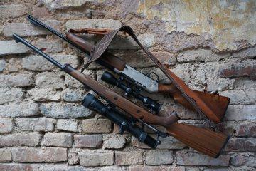 Pověsí čeští držitelé zbraní flintu na hřebík?