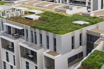 Zelené střechy ve svých projektech podporuje projekční kancelář DELTA